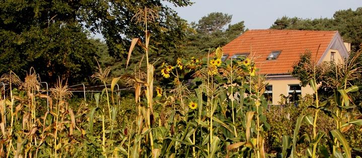 foto www.christoforusgemeenschap.be